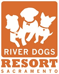 River Dogs Resort